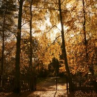 Вход в осень. :: Lidija Abeltinja