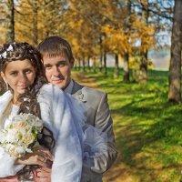 Свадьба Алены и Максима :: Alexander Moshkin