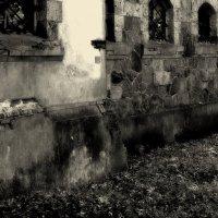 Wall... :: Perfect Stranger