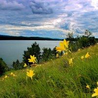 Сказочный пейзаж. :: Наталья Юрова