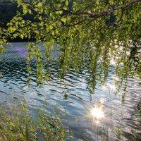 Солнце и вода!!! :: Наталья Юрова