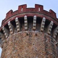 Башня замка :: Natalia Horborukova