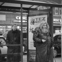три евро....на путёвку... :: Людмила Шустова