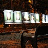 ночь в сокольниках :: Sergey Ganja