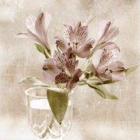Фужер, хранитель увядающих цветов... :: Анна Тихомирова