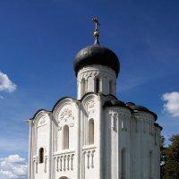 Покрова на Нерли :: Сергей Никитин
