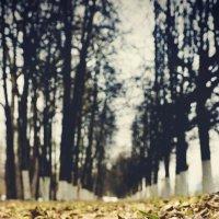 Осенняя грусть :: MARIA BRAGINA