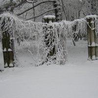 Зима в Одессе :: Александр Волков