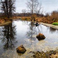 Озеро. :: Геннадий Комиссаров