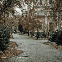 ...Стоял ноябрь уж у двора... :: Сергей Гашников