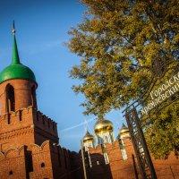 Городской Кремлевский сад. Тула :: Виталий Ахмедьянов