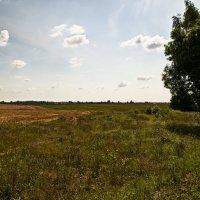 Белорусские поля :: PAZITIF (Сергей) Н