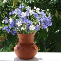 Полевые цветы :: Mariya laimite