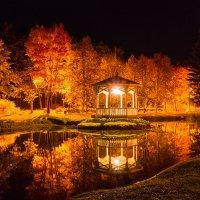 Осень :: Дима Хессе