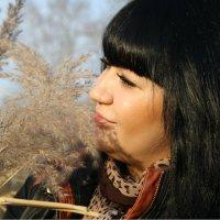 В камышах :: Любовь Ушакова