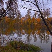 Осень-рыжая подруга... :: Виктория Колпакова