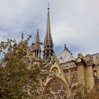 Осень. Париж. :: Алексей Пышненко