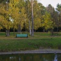 В парке... :: Кирилл