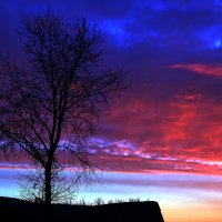 Утро нового дня.. :: елена юлашева
