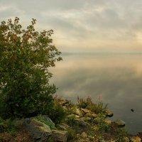 Когда туман уходит... :: Олег Сонин