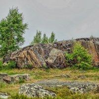 Кемьские скалы :: Сергей Кочнев