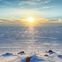 Зима на Финском заливе :: Ростислав Бычков