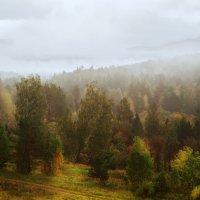 Осень в Уральских горах. :: Виктор Максон