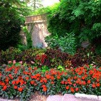 в саду :: Роман Мамчук