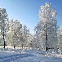Зима.. :: Екатерина Павлова