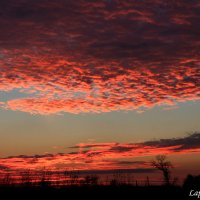 На закате дня :: Мария Лапшина