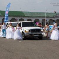 Парад невест_Кострома 2013 :: Николай Добровольский