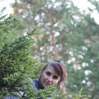 В лесу :: Александр Уваров