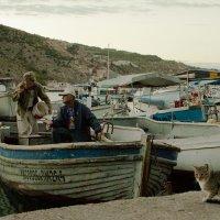 Рыбаки :: Yulia Braginets