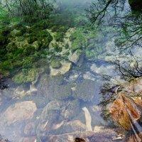 Голубое озеро :: Demetrio Smirnoff