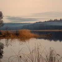Там дым Отечества, и осень привечают… :: Александр | Матвей БЕЛЫЙ