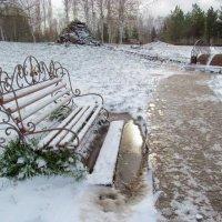 Пришла зима :: Регина Богомолова