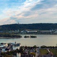 Rüdesheim am Rhein :: Lina Kurbanovsky