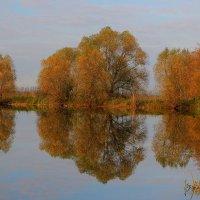 Осень :: Victor Klyuchev