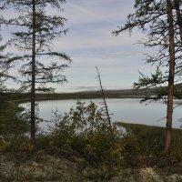 Утро над озером :: Александр Хаецкий