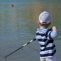 Игра в бильярд на озере :: Юлия Уткина