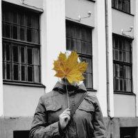 Autumn Shelter :: Anique Mot