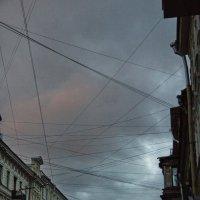 Городская паутина :: Анна Титова