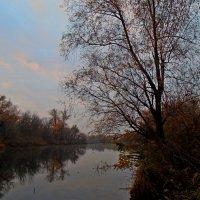 Утро на заливе :: Ростислав