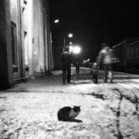 Одиночество-с... :: Вероника Любимова