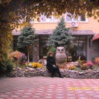 осень :: Ирина Красникова-Дашкова