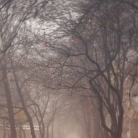 Одиночество.Осень :: Alina Golovkova