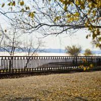 Осень :: Олька Н