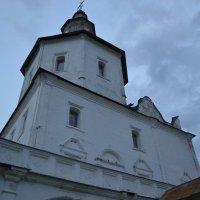 свенский монастырь(без обработки ) :: pangrador(юрий) щукин