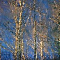 Осенне-синий этюд о текущей воде, вечернем солнце и ожидающем снега лесе :: Владимир Захаров