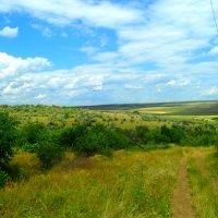 Яркие краски природы.. :: Екатерина Маркова
